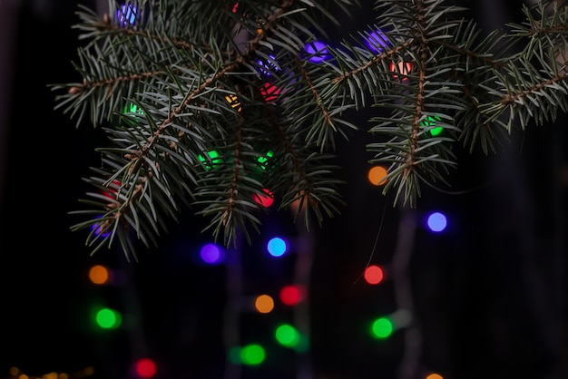 Weihnachtszweig der fichte auf einem dunklen hintergrund bokeh