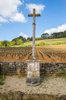 Weinberg in burgund, frankreich, mit einem steinkreuz mit klarem himmel