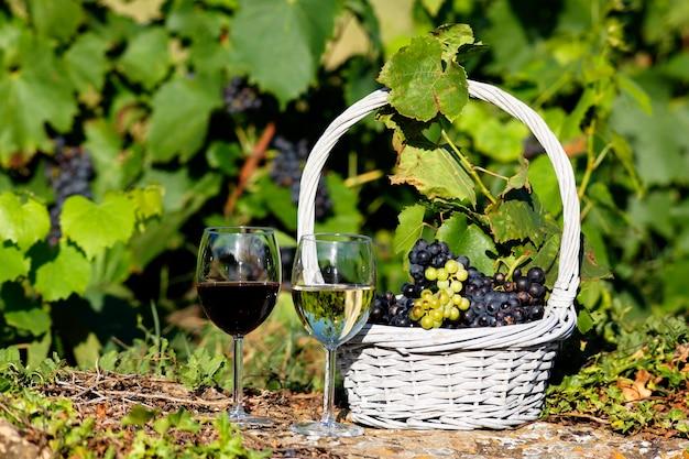 Weingläser und trauben, frankreich