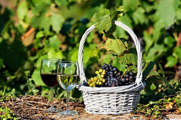 Weingläser und trauben im korb, frankreich