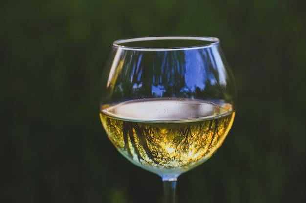 Weinglas mit wein im blühenden apfelgarten