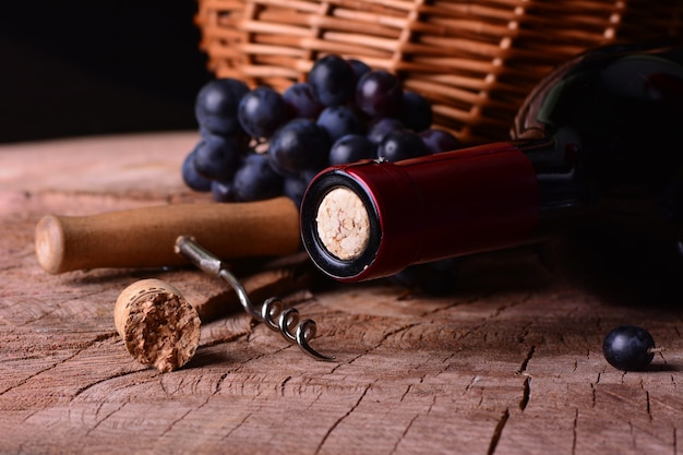 Weinkeller, diesjährige ernte
