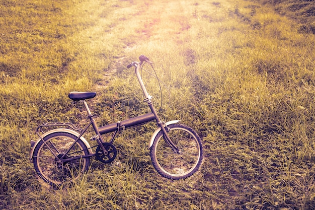 Weinlese-fahrrad in einem park mit hellem ton.