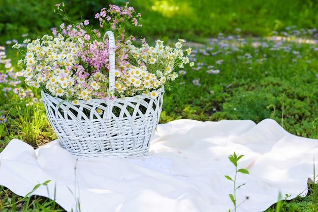 Weinlese-feld und blumen in einem weißen korb draußen. sommer grünen hintergrund