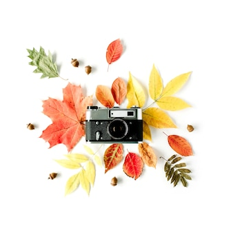 Weinlese-retro-kamera und blumenrahmen des herbstherbstes mit eichel, ahornblatt