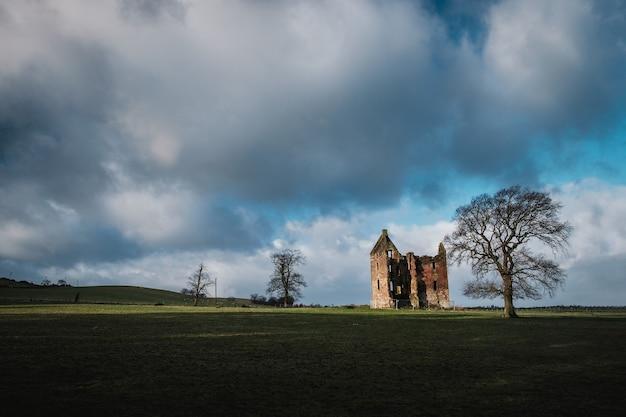 Weinlese ruinierte burg 17. jahrhundert auf dem gebiet mit bäumen, gilbertfield castle, glasgow, south lanarkshire, schottland