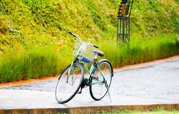 Weinlesefahrrad im garten