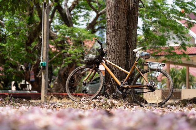 Weinlesefahrrad mit großem baum