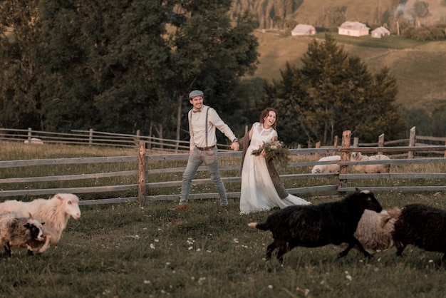 Weinlesehochzeit von braut und bräutigam auf einer ranch mit einem pferd auf spitzenhügeln