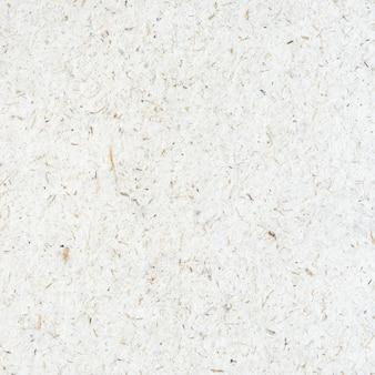 Weißbuchbeschaffenheit und -hintergrund des maulbeeres