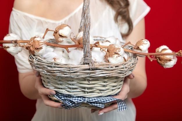 Weiße baumwollblumen in einem korb in den weiblichen händen