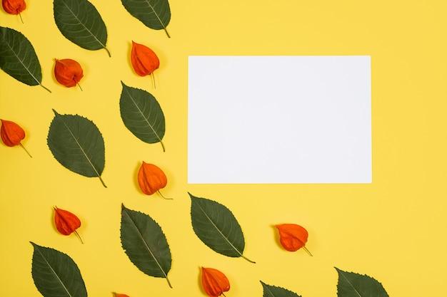 Weiße blattlüge auf einem gelben hintergrund mit blättern und physalis eines mustergrüns