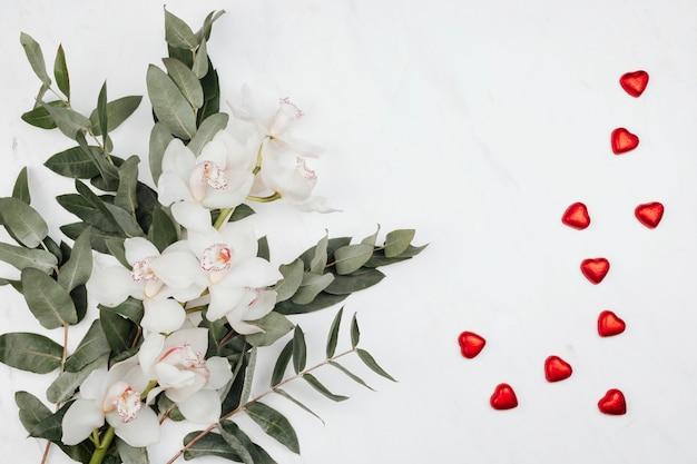 Weiße blüten mit eukalyptus und roten pralinen