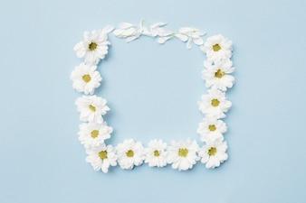 Weiße Blume, die quadratischen Rahmen auf normalem Hintergrund bildet
