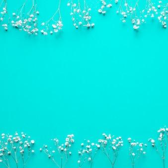 Weiße blumen auf blau