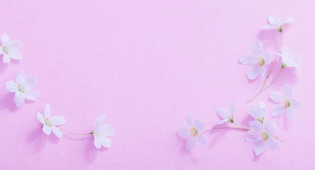 Weiße blumen auf rosa papieroberfläche