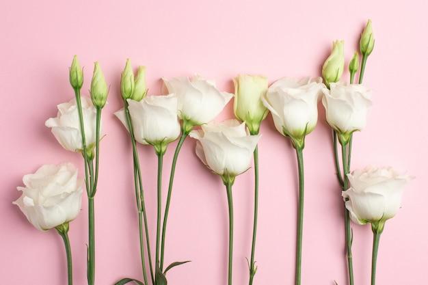 Weiße blumen auf rosa