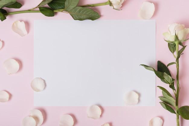 Weiße blumenblätter und rosen auf papier über rosa hintergrund