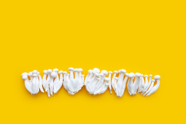 Weiße buchenpilze, shimeji-pilz, essbarer pilz auf gelber oberfläche Premium Fotos