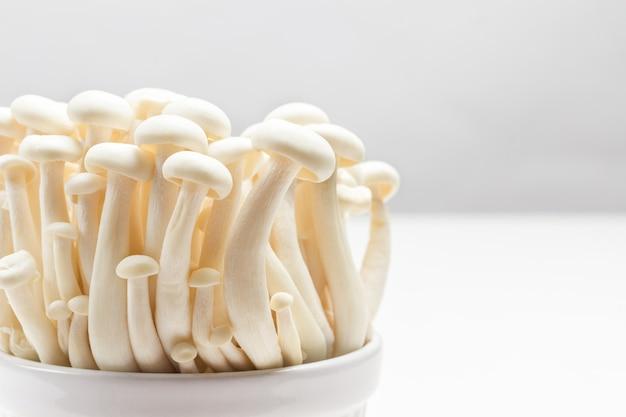 Weiße buchenpilze, shimeji-pilz in keramikschalen.