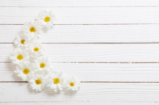 Weiße chrysantheme auf weißem hölzernem hintergrund