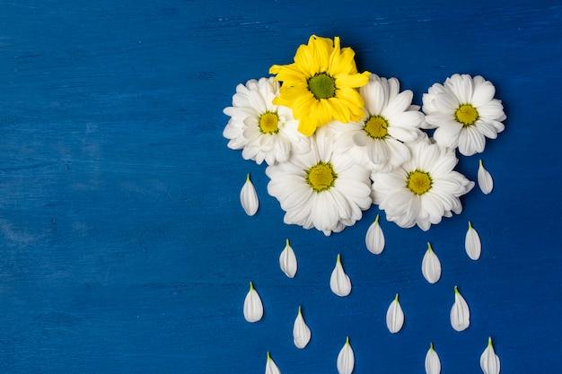 Weiße chrysanthemen in form von wolken und die regentropfen der blütenblätter. frühlings- oder sommerhintergrund mit kopierraum für text