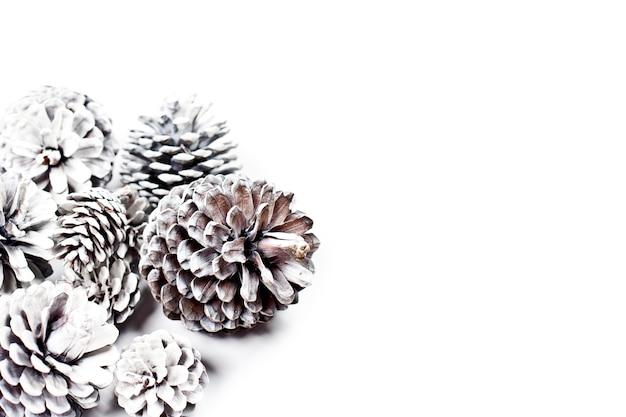 Weiße dekorative tannenzapfen