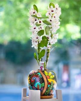 Weiße dendrobium nobile orchideenblume im gemalten topf