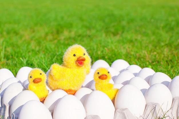 Weiße eier des nahaufnahmetellers mit den symbolen von gelben hühnern ostern
