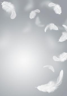 Weiße feder schwebte in der luft. grauer hintergrund.
