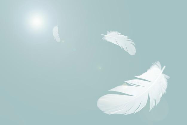 Weiße federn fliegen in der luft.