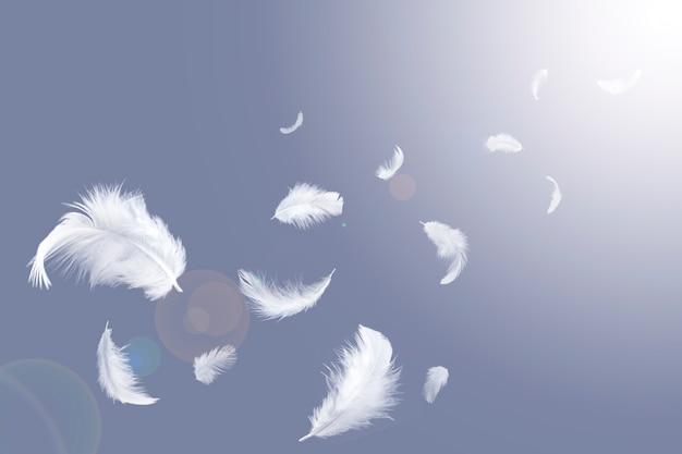 Weiße federn schweben im himmel.