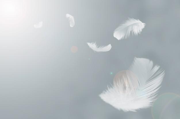 Weiße federn schweben in der luft