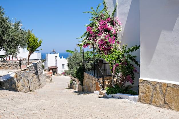 Weiße ferienvillenhäuser im resort mit meerblick und palmen und blumen