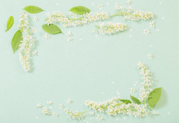 Weiße frühlingsblumen auf papieroberfläche