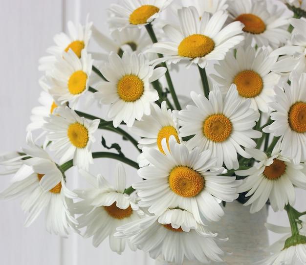 Weiße gänseblümchen als hintergrund ein blumenstrauß schließt ein sommerliches zartes bild ein blumenhintergrund ein selektiver fokus
