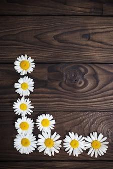 Weiße gänseblümchen auf altem hölzernem hintergrund