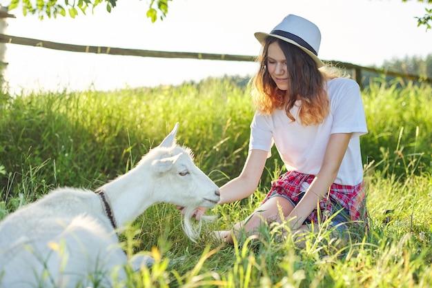 Weiße heimische bauernhofziege auf dem rasen mit teenager-, mädchen- und tierfreundschaft.
