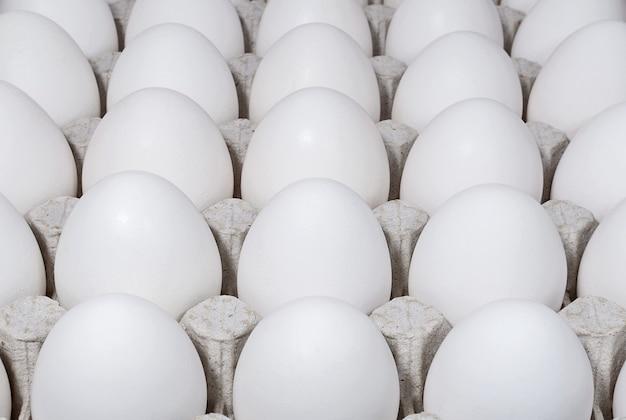Weiße hühnereier in einem tablett