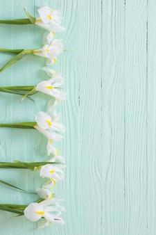 Weiße iris auf grünem hölzernem hintergrund