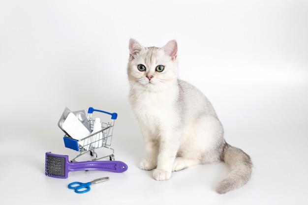 Weiße katze sitzt auf einem weißen hintergrund mit einem einkaufswagen voller pillen und medikamente. in der nähe befinden sich eine klauenschere und ein kamm. arzneimittel und produkte zur pflege von haustieren.