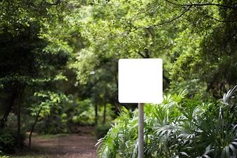 Weiße leere Anschlagtafel im Park mit Naturhintergrund.