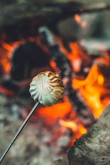 Weiße marshmallows am stiel werden über dem feuer gebraten. marshmallows werden am lagerfeuer in der natur gebraten.