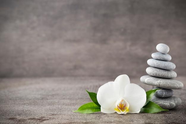 Weiße orchideen- und spa-steine auf dem grau.