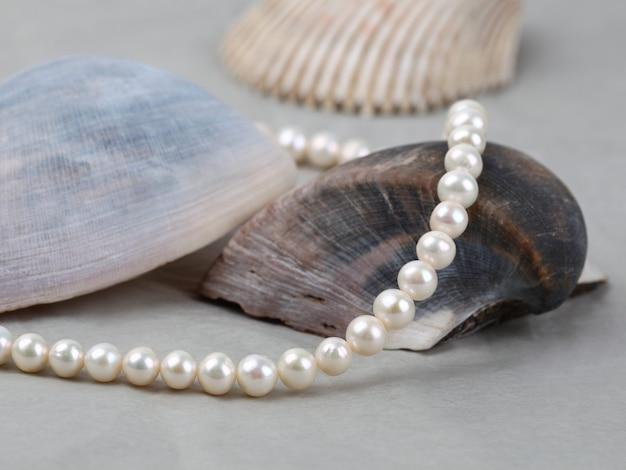 Weiße perlenkette auf meeresmuschelhintergrund