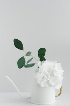 Weiße pfingstrose in einer weißen gießkanne