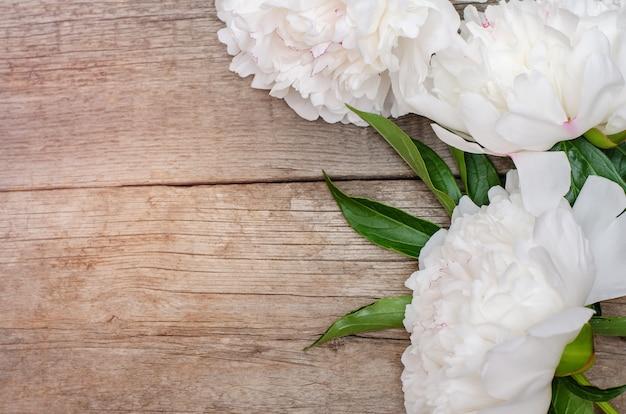 Weiße pfingstrosenblume auf holztisch