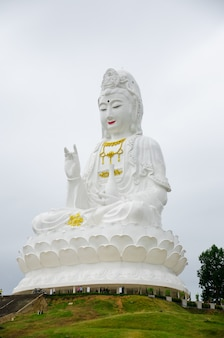 Weiße quan yin statue
