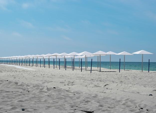 Weiße regenschirme in einer reihe an einem sandstrand