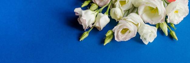 Weiße rosa eustoma-blumen auf blauer oberfläche im vintage-stil. draufsicht. weiße lisianthusblüte. banner-format für glückwünsche hochzeitseinladungskarten